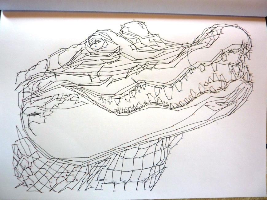 Dot Croc