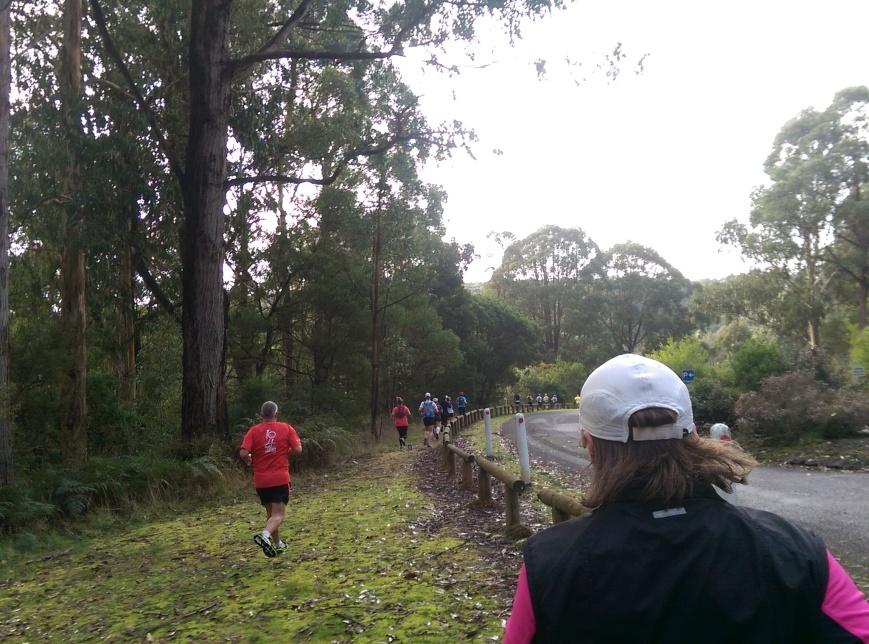 Run Forrest 1