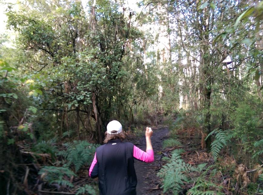 Run Forrest 3
