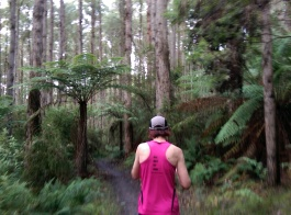 Forrest Half Marathon 2015