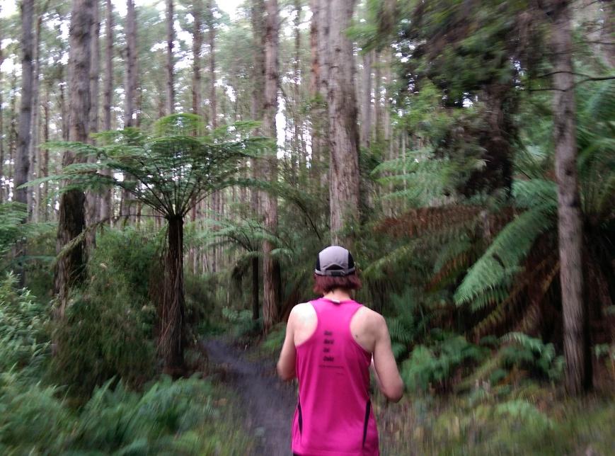 Run Forrest 4
