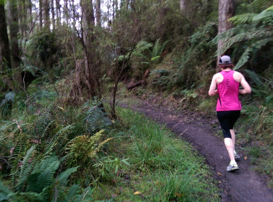 Run Forrest 5